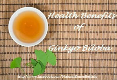 Ginkgo Biloba Benefits and Cautions